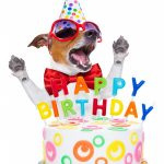 grappige verjaardagskaart